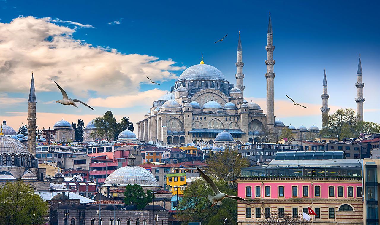 Istanbul Turkey Houses Temples Birds Clouds - ავიაბილეთები სტამბული